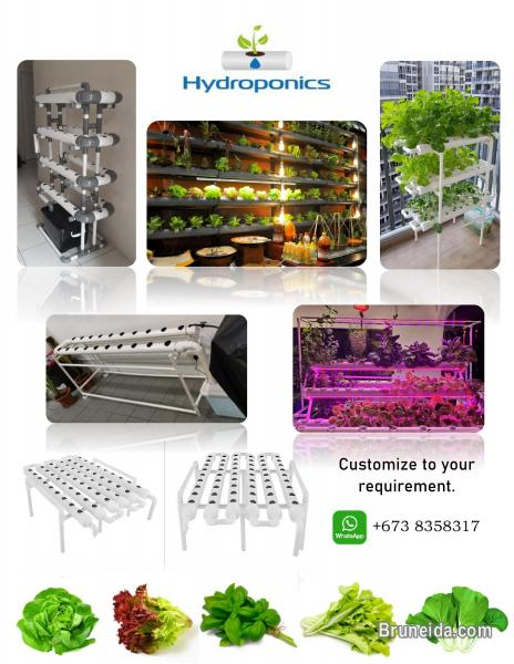 Picture of Hydroponic items