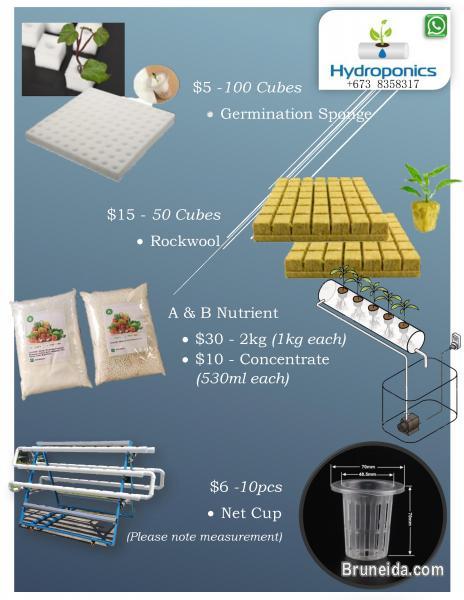 Hydroponic items