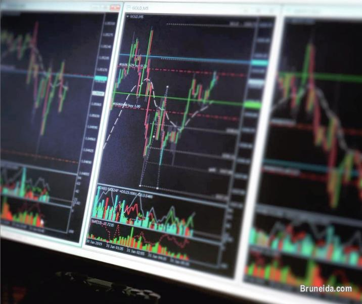 Picture of Forex training