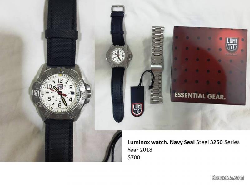 Picture of Luminox Watch
