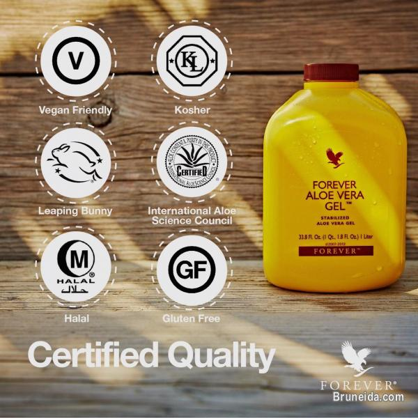 Picture of Forever Living