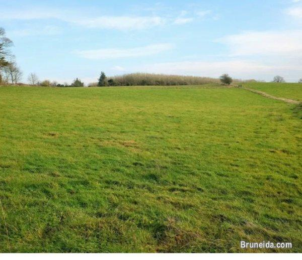 Pictures of Looking for Land to Rent