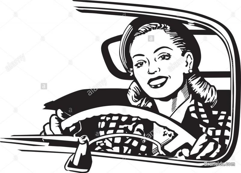 Pictures of Need a Lady Driver - Transport Service
