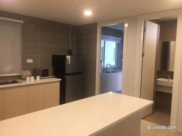 AMAN HILLS APARTMENT FOR RENT AT KG SG TILONG - FULLY FURNISHED in Brunei