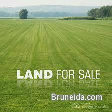Picture of Land For Sale - BSB