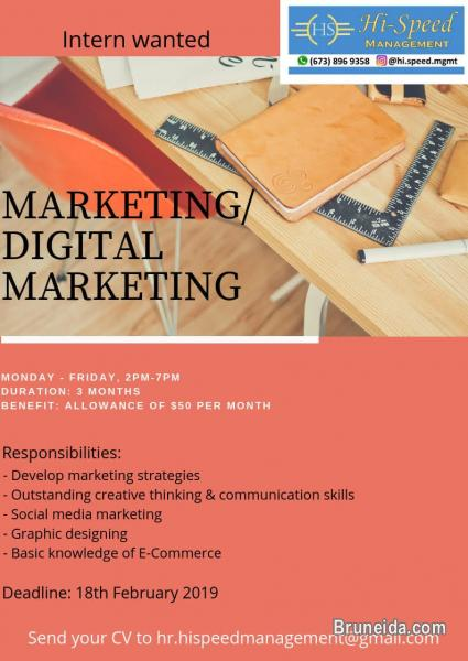 Picture of Marketing / Digital Marketing (Internship)