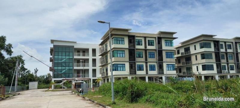 Apartment for Rent in KB