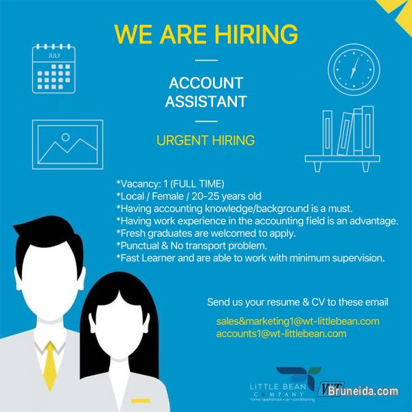 Picture of Account Assistant