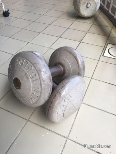 Picture of Dumbbell