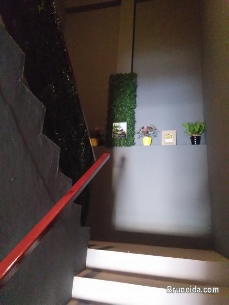 Sharing Dormitory Room - image 11