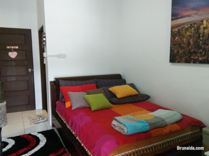 Picture of Suite 102 - Co. Living Suite, Rimba