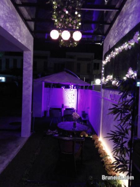 Suite 102 - Co. Living Suite, Rimba