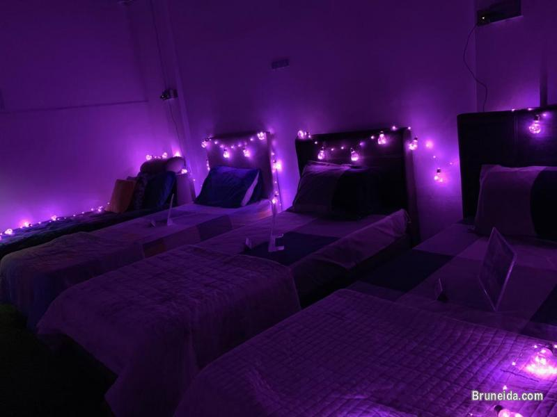 Bed and Room for Rent in Brunei Muara - image