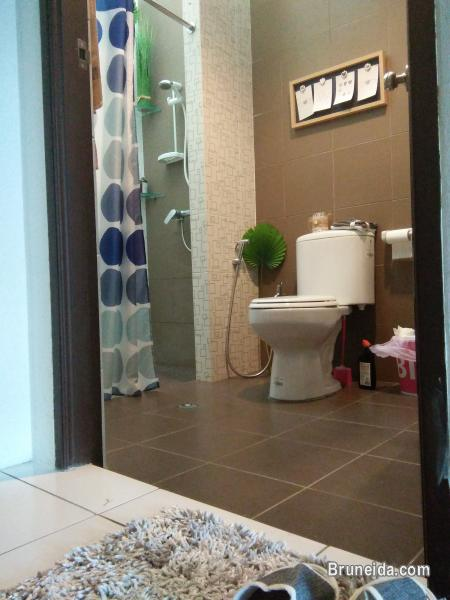 Master Room Ensuite - Daily, Weekly & Monthly - image 5