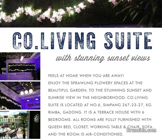 Pictures of Co. Living Suite
