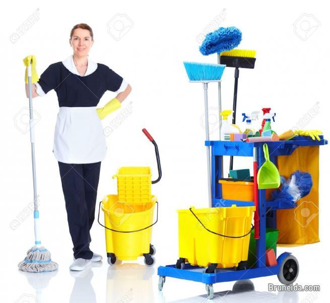 Cleaner & Housekeeper