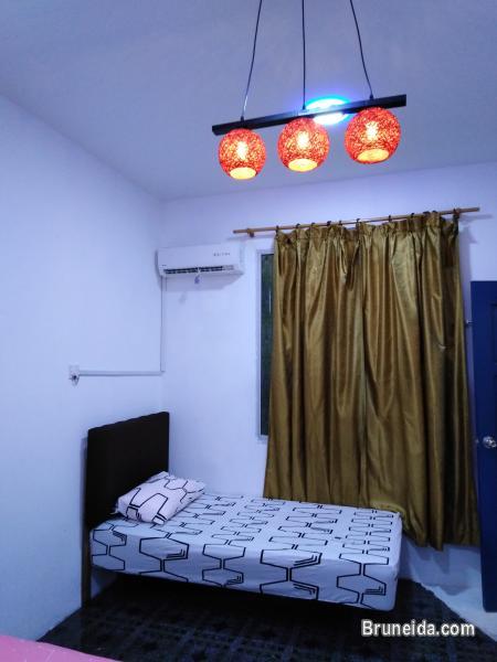 Dormitory Bed @ Co. Living Saga - image 10