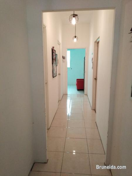 Dormitory Bed @ Co. Living Saga in Brunei