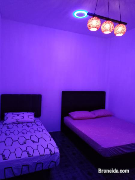 Picture of Dormitory Bed @ Co. Living Saga in Brunei