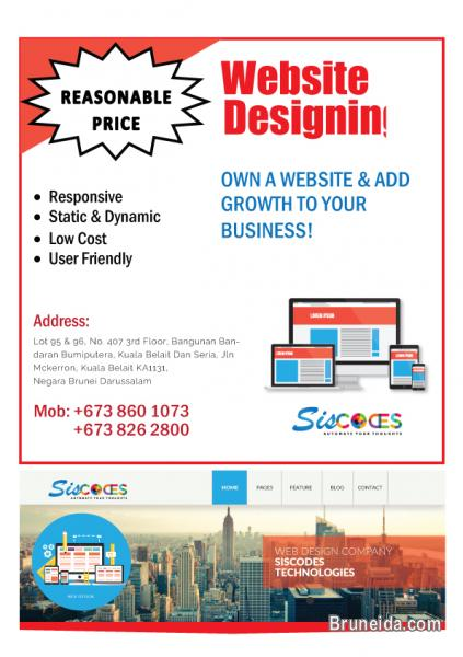 Picture of WEB DESIGNING & DEVELOPMENT