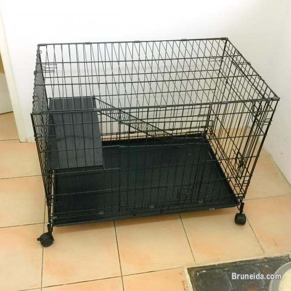 Picture of Cat cage for sale
