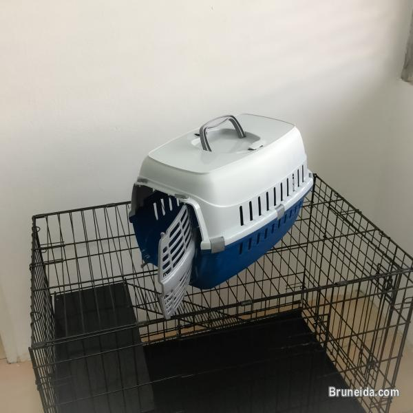 Picture of Cat carrier for sale