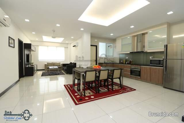 FULLY FURNISHED APARTMENT FOR RENT IN KB - image 1