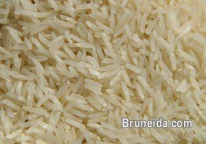 Picture of Rice IRRI-6