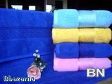 Picture of Towel and Bathrobe