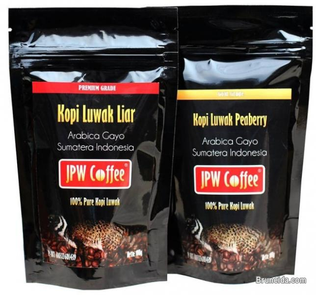 Pictures of Luwak Coffee