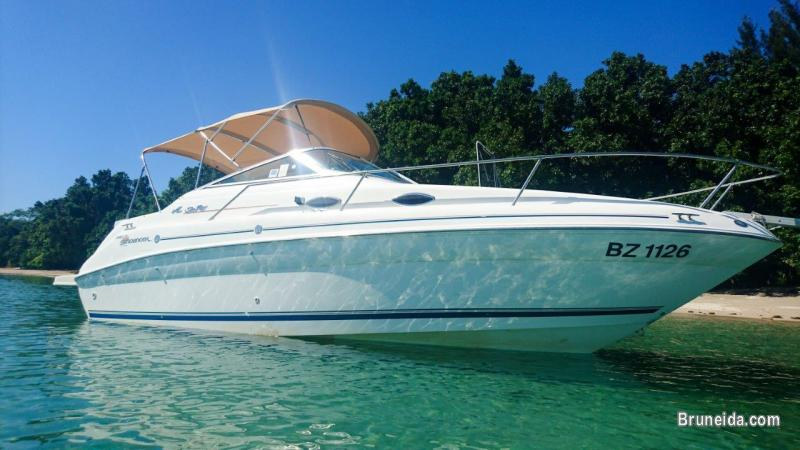 Picture of Searay 240 Sundancer