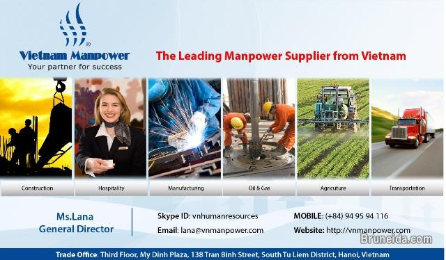 Picture of The leading Manpower Service in Vietnam