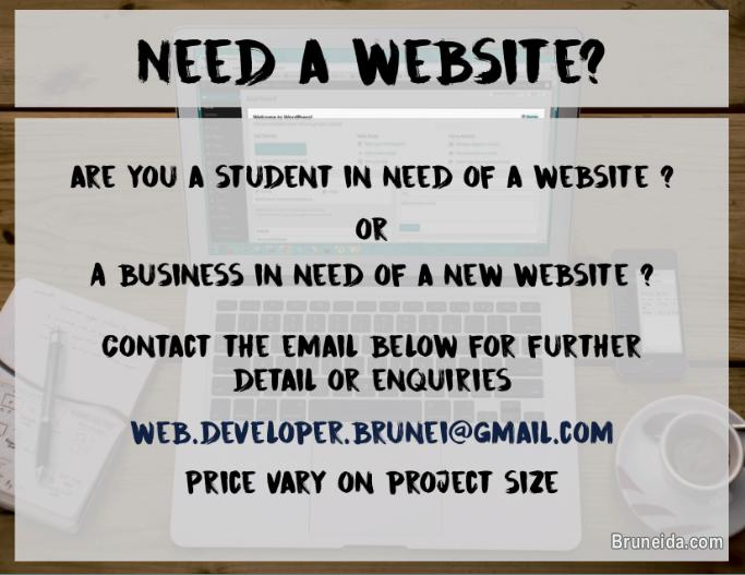 Picture of Website Development