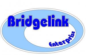 Logo of Bridgelink Enterprise